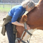 kathystevens