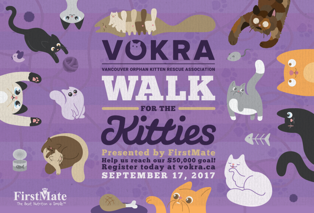 Support VOKRA by walking for kitties on September 17th!