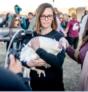 100 Turkeys Saved from the Slaughter of Thanksgiving, and Amy Quichiz of Veggie Mijas