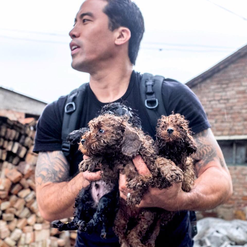 "Marc Ching, Rescuer of Dogs From the Meat Trade in Asia; and ""Vancouver Aquarium Uncovered"" Filmmaker Gary Charbonneau Responds to Lawsuit Allegations"