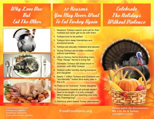 thanksgiving_brochure